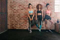 Fitness women standing together in gym Royalty Free Stock Image