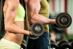 Fitness youple workout - fit mann and woman train in gym Stock Photos