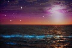 Fitoplacton que brilla intensamente en el mar en la noche Fotografía de archivo