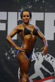 Fitparade bodybuildingmästerskap Royaltyfri Foto