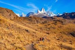 Fitz Roy góra, Patagonia Obrazy Stock