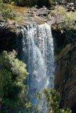 Fitzroy Falls royalty free stock photo