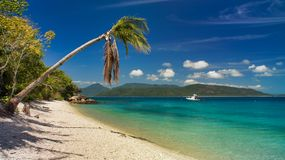 Free Fitzroy Island Near Cairns Australia, Palm, Beach, Stock Photos - 157280873