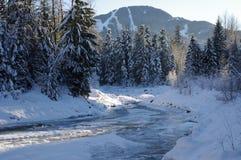 Fitzsimmons小河在吹口哨村庄 免版税库存图片