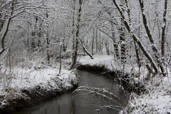 Fiume 1 della foresta di inverno Fotografie Stock