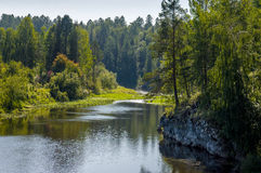 Fiume ad una luce solare luminosa del parco naturale Fotografie Stock