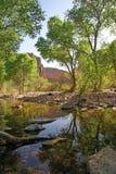 Fiume al canyon dell'insenatura dei pesci in Arizona Fotografia Stock