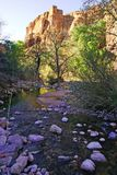 Fiume al canyon dell'insenatura dei pesci in Arizona Immagini Stock Libere da Diritti