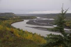 Fiume Alaska di Matanuska di caduta Immagini Stock