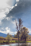 Fiume, albero e nuvole Immagini Stock