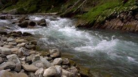 Fiume alpino con le rocce Flusso veloce video d archivio
