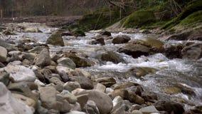 Fiume alpino con le rocce Flusso veloce archivi video