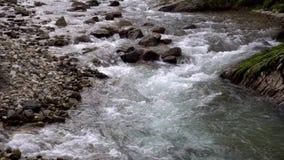 Fiume alpino con le rocce Torrente montano veloce video d archivio