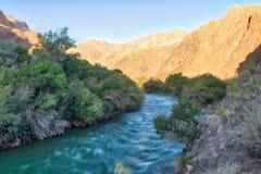 Fiume attraverso il canyon di Charyn in Au contenuto il Kazakistan sudorientale immagine stock libera da diritti