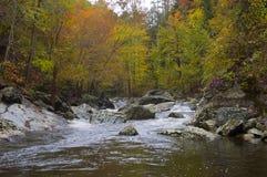 Fiume attraverso la foresta di autunno Immagine Stock