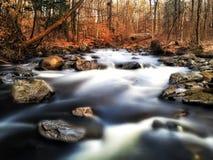 Fiume attraverso una foresta di autunno Fotografia Stock Libera da Diritti