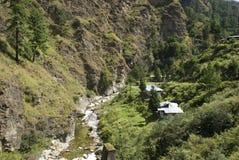 Fiume, Bhutan Fotografie Stock Libere da Diritti