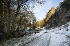 Fiume che attraversa il paesaggio innevato di inverno in foresta va Fotografia Stock