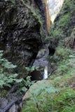 Fiume che passa attraverso il canyon Fotografia Stock Libera da Diritti