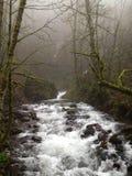 Fiume che passa la foschia a Portland, Oregon Fotografia Stock Libera da Diritti