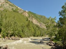 Fiume Chuya, Altai, Siberia, Russia Fotografie Stock
