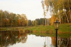 Fiume con Autumn Trees Immagini Stock Libere da Diritti
