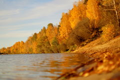 Fiume con Autumn Trees Fotografia Stock