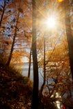 Fiume con Autumn Trees Fotografie Stock Libere da Diritti