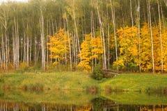 Fiume con Autumn Trees Immagine Stock Libera da Diritti