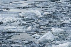 Fiume con ghiaccio rotto Fotografia Stock Libera da Diritti
