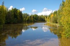 Fiume con i colori di autunno Fotografia Stock Libera da Diritti