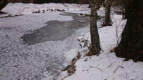 Fiume congelato con neve Immagini Stock