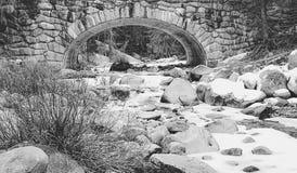 Fiume coperto di neve al parco nazionale della sequoia in bianco e nero Fotografia Stock