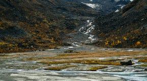 Fiume dal ghiacciaio sulla montagna Belukha Fotografia Stock