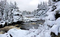 Fiume del Canada della neve di inverno Fotografie Stock Libere da Diritti