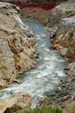 Fiume del canyon della shoshone, Wyoming Fotografia Stock Libera da Diritti