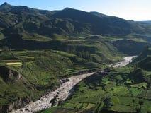 Fiume del canyon di Colca Immagine Stock
