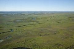 Fiume del delta del Botswana che serpeggia attraverso la pianura africana Immagine Stock