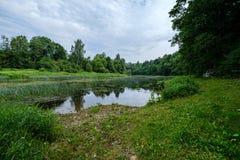 fiume del paese nell'immagine aerea del fuco verde della foresta fotografie stock