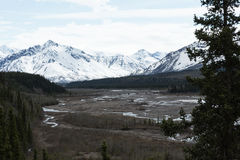 Fiume del Teklanika dell'Alaska Fotografia Stock