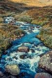 Fiume dell'alta montagna della Norvegia Fotografia Stock Libera da Diritti