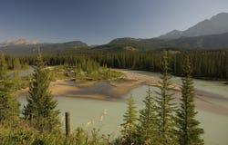 Fiume dell'arco nel parco nazionale di Banff Immagine Stock Libera da Diritti