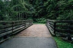 Fiume dell'incrocio del ponte di legno in cascate di Krimml Immagine Stock