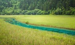 Fiume della giada del parco nazionale della valle di Jiuzhai Fotografia Stock Libera da Diritti