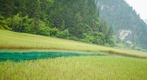 Fiume della giada del parco nazionale della valle di Jiuzhai Fotografie Stock