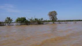 Fiume della linfa di Tonle in Cambogia video d archivio
