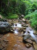 Fiume della montagna Fotografie Stock