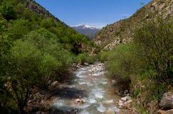 Fiume della montagna Fotografie Stock Libere da Diritti