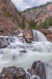 Fiume della montagna Acqua di ruscello veloce altai Fotografia Stock Libera da Diritti