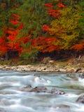 Fiume della montagna in autunno fotografie stock